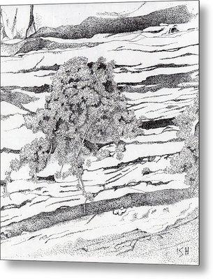 Shrub In Sedimentary Rock Metal Print by Inger Hutton