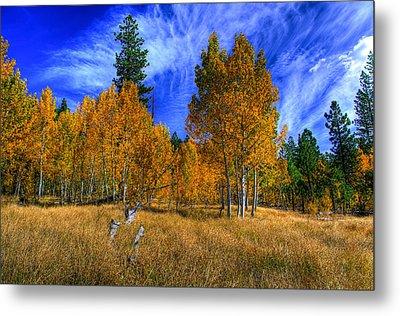Sierra Nevada Fall Colors Lake Tahoe Metal Print by Scott McGuire