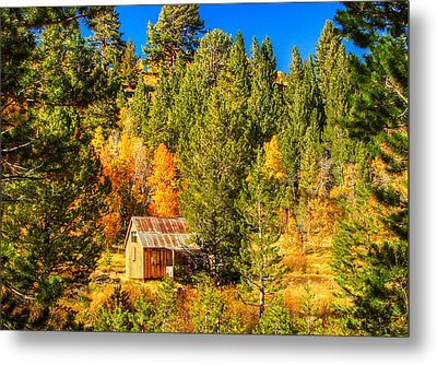Sierra Nevada Rustic Americana Barn With Aspen Fall Color Metal Print by Scott McGuire