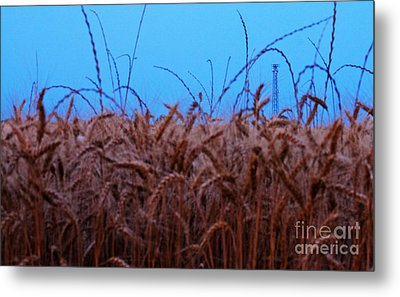 Sign Of The Times Metal Print by Lisa Holmgreen