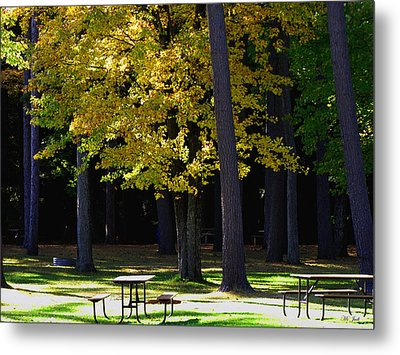 Silence In The Park Metal Print by Ms Judi