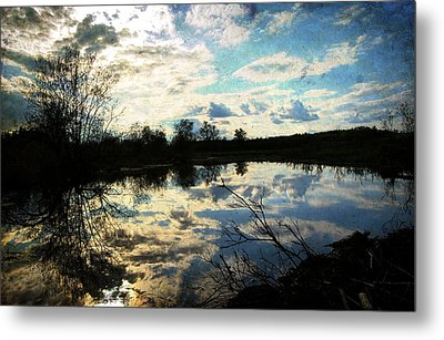 Silence Of Worms Metal Print by Jerry Cordeiro