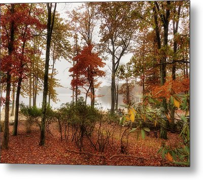 Silent Autumn Metal Print by Yelena Rozov
