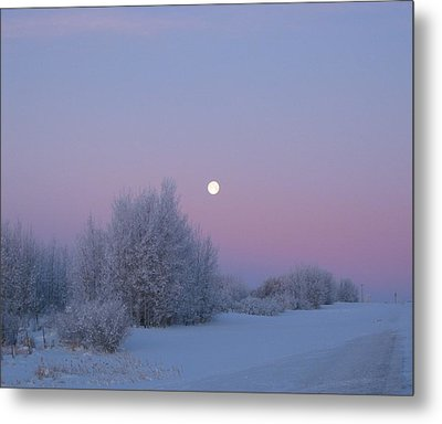 Silent Morning Metal Print