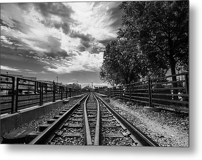 Metal Print featuring the photograph Silent Spur by Tom Gort