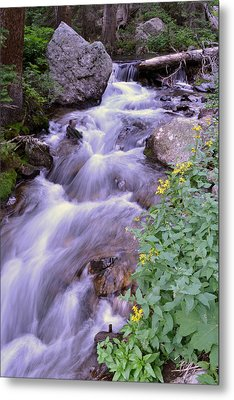 Metal Print featuring the photograph Silky Stream by Zawhaus Photography