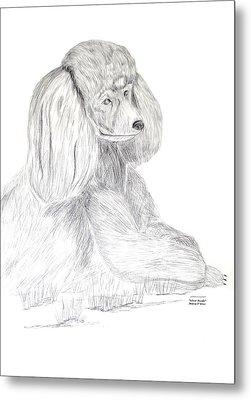 Silver Poodle Metal Print by Maria Urso