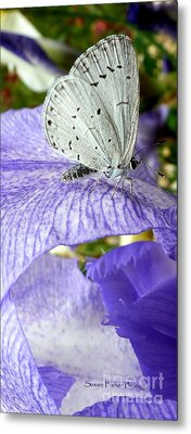 Silver Metal Print by Susan Fisher