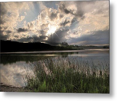 Metal Print featuring the photograph Sit Back...relax by Cindy Haggerty