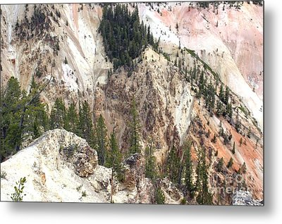 Sit For A Spell At Grand Canyon In Yellowstone Metal Print by Living Color Photography Lorraine Lynch