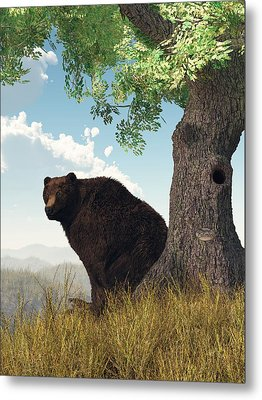 Sitting Bear Metal Print by Daniel Eskridge