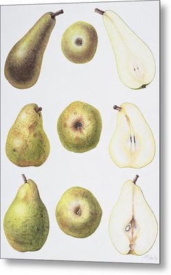 Six Pears Metal Print
