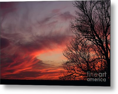 Sky On Fire Metal Print by Art Whitton