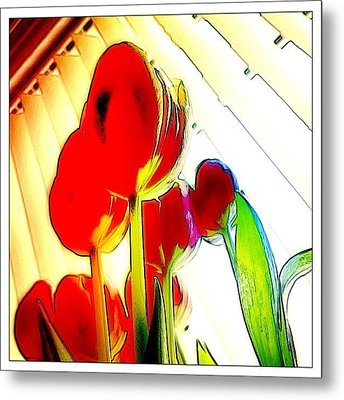 Skywards Metal Print by Mark B
