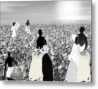 Slaves Picking Cotton Metal Print by Belinda Threeths