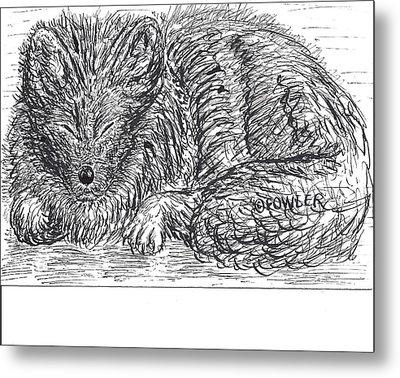 Sleepy Fox Metal Print by John A Fowler