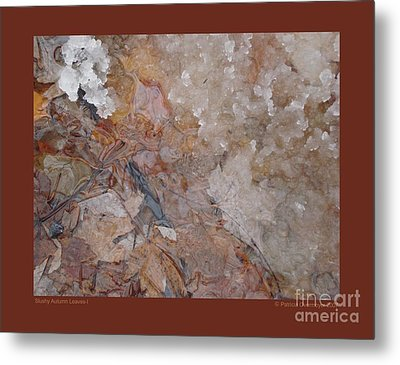 Metal Print featuring the photograph Slushy Autumn Leaves-i by Patricia Overmoyer