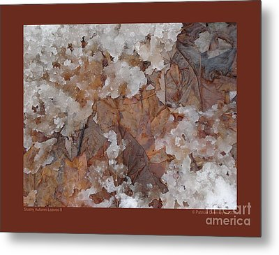 Metal Print featuring the photograph Slushy Autumn Leaves-ii by Patricia Overmoyer