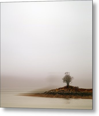 Small Island With Lone Tree Metal Print by Andrew Lockie
