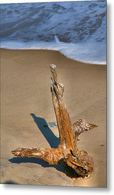 Snag And Surf II Metal Print by Steven Ainsworth