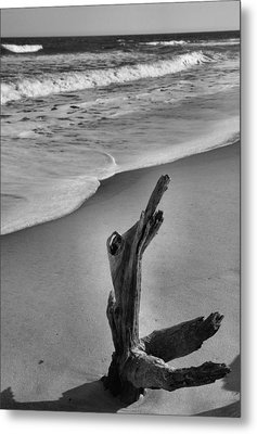 Snag And Surf Metal Print by Steven Ainsworth