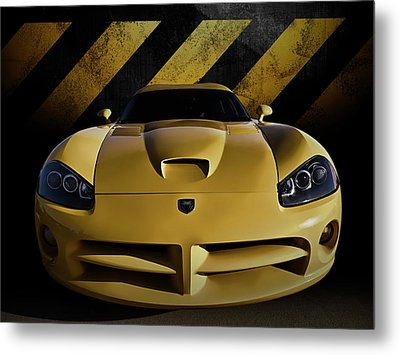 Snake Crossing Metal Print by Douglas Pittman