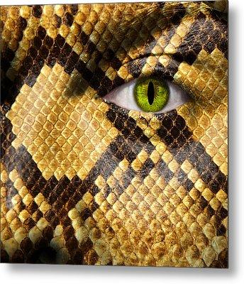 Snake Eye Metal Print by Semmick Photo