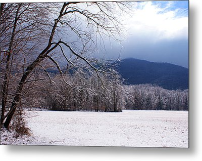 Metal Print featuring the photograph Snow And Ice by Paul Mashburn