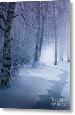 Snow Brook Metal Print by Robert Foster