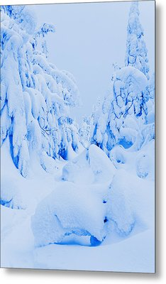Snow-covered To Vallee Des Fantomes Metal Print by Yves Marcoux