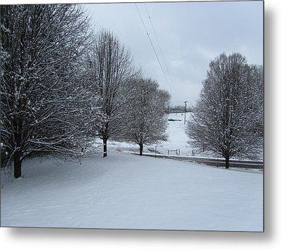 Snow Day Metal Print by Kathy Long