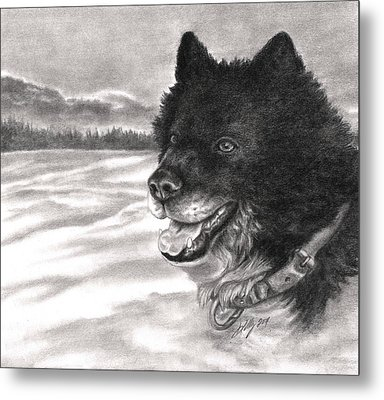 Snow Dog Metal Print by Kathleen Kelly Thompson