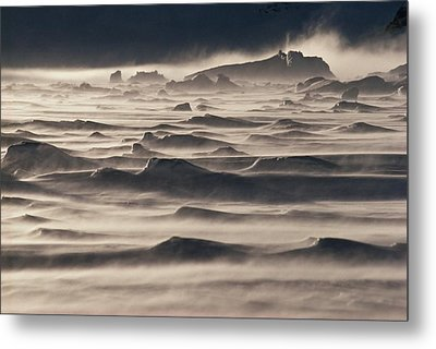 Snow Drift Over Winter Sea Ice Metal Print by Antarctica