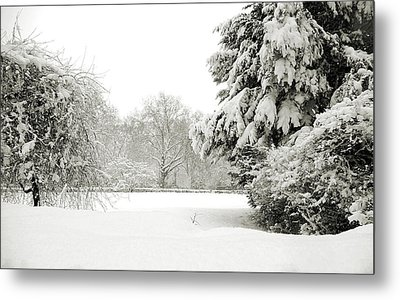Metal Print featuring the photograph Snow Packed Park by Lenny Carter