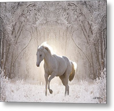 Snow White Metal Print by Bill Stephens