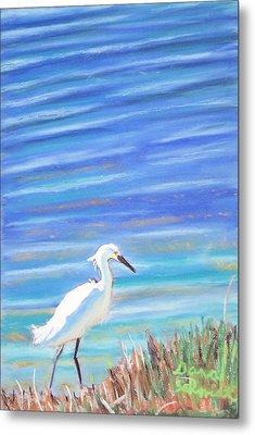 Snowy Egret At Sanibel Island Metal Print