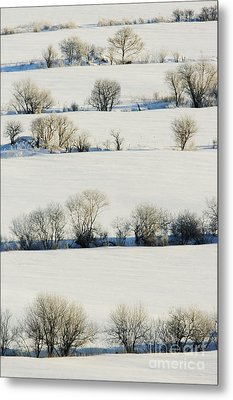 Snowy Landscape Metal Print by Jeremy Woodhouse