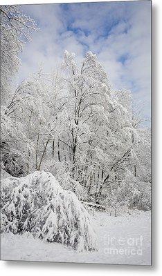 Snowy Landscape Metal Print by Len Rue Jr and Photo Researchers
