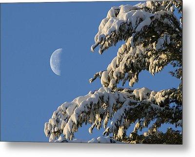 Snowy Moon Metal Print