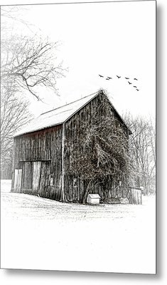 Snowy Morning Metal Print by Mary Timman