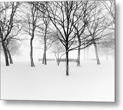Snowy Trees And Park Benches Metal Print