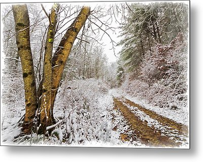 Snowy Watercolor Metal Print by Debra and Dave Vanderlaan