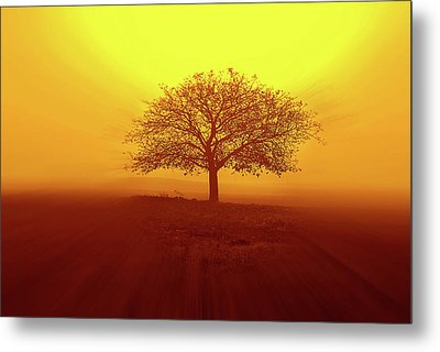 So Lonely Metal Print by Philippe Sainte-Laudy Photography