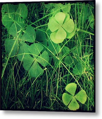 Metal Print featuring the photograph So Lucky by Robin Dickinson
