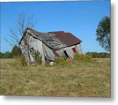 Metal Print featuring the photograph So Tired by Deena Stoddard