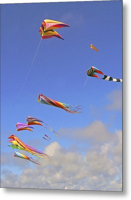 Soaring With The Clouds Metal Print by Pamela Patch
