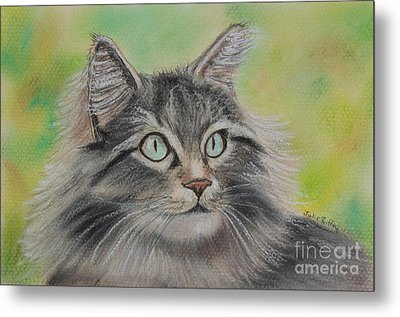 Soft Kitty Metal Print by Julie Brugh Riffey