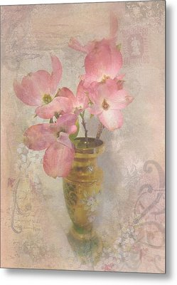Softly Blooming Metal Print by Cindy Wright