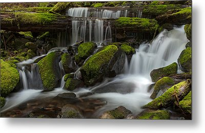 Sol Duc Stream Metal Print by Mike Reid