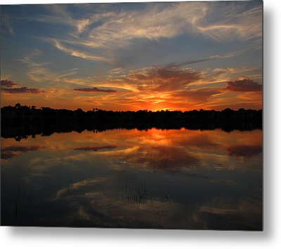 Solace Metal Print by Bill Lucas